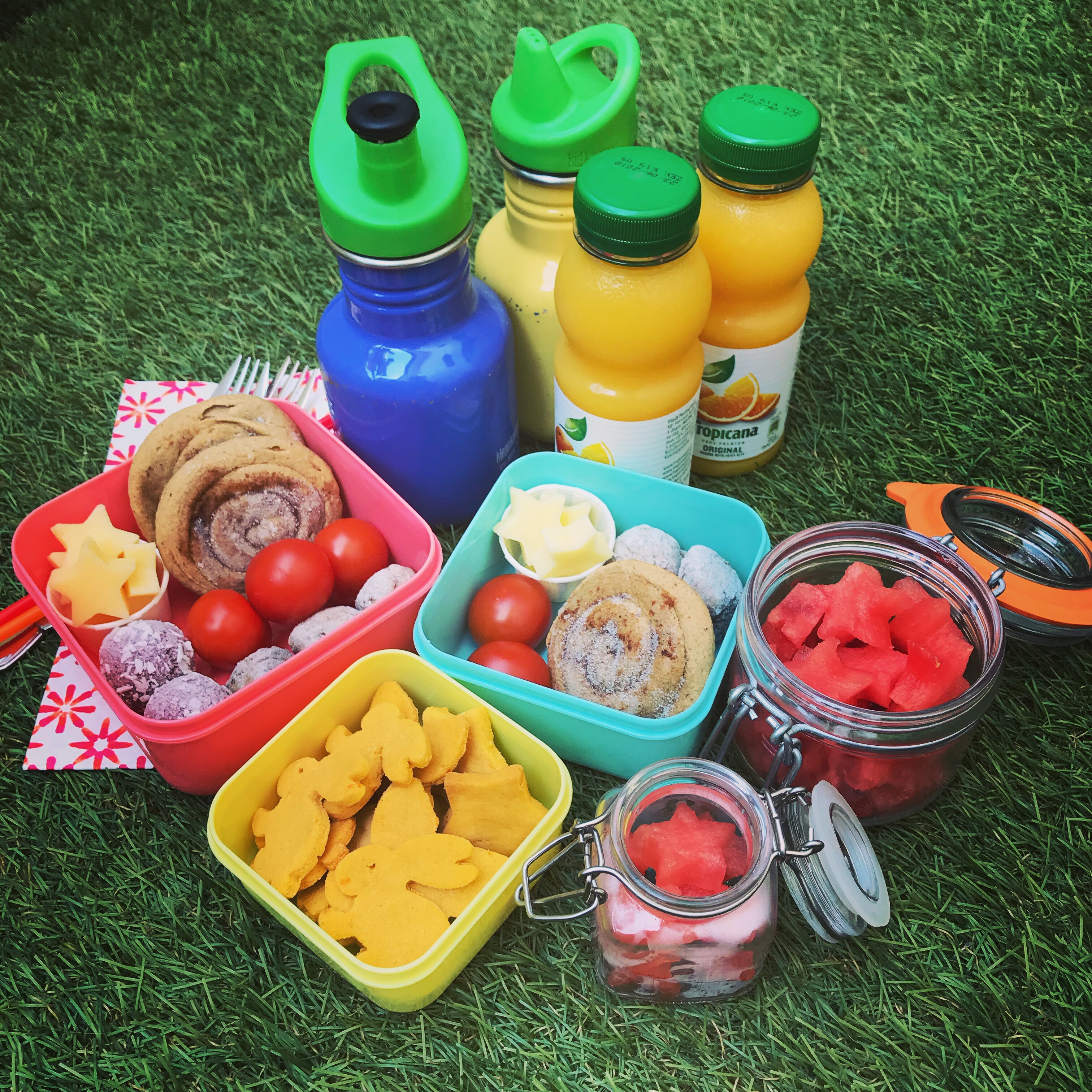 Picknick med plock